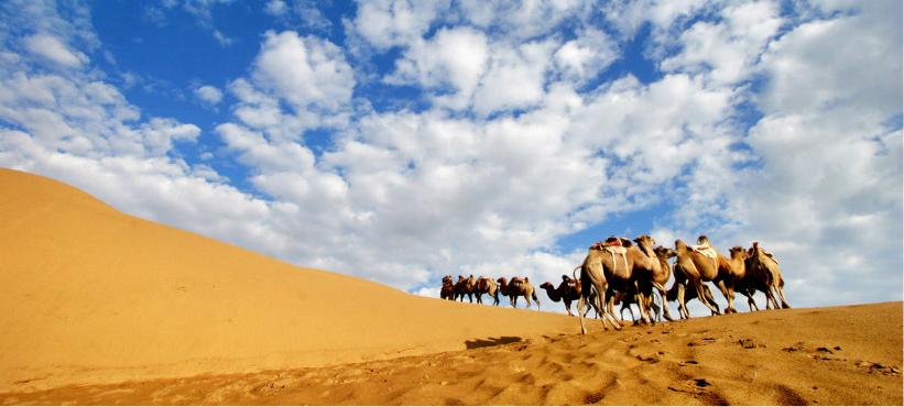 库布齐沙漠位于内蒙古自治区伊克昭盟杭锦旗、达拉特旗和准格尔旗的部分地区。总面积约145万公顷,是距离北京最近的沙漠,在我国沙漠排名中位居第七。库布齐沙漠浩瀚大气,沙海苍茫,因横卧在鄂尔多斯高原上而多了分份少数民族风情。