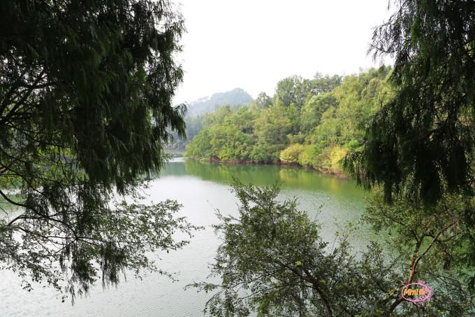 楼主从千岛湖大桥一路到竹里观景台再返回