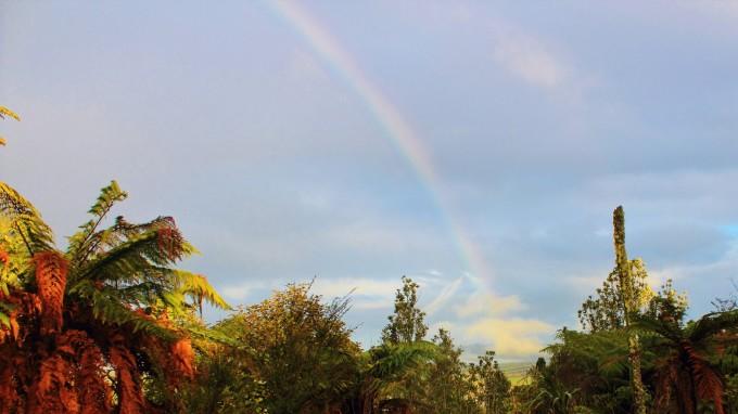 --> 2014.6.21. 冬至。阴,有时雨。新西兰没有节气,四季都是按自然月份算的。今天是全年最短的一天(比夏至的白昼短四个小时),是一路有你成军以来出行最早(6:45分)、人数最少(四人)的一次例行周六活动。 鉴于上周发生的一次未遂事故,我们就安全问题,在行驶的车上展开了热烈的讨论,形成三项决议:1,在森林里行走,阿香和SARAH打头阵,我和老伴殿后。考虑TONY的能力和特点封为行军总管,负责所有队友安全,尤其是新加入女队友之安全;2,群里大小事宜推崇群主指挥,一切政令、褒奖令、聚餐令、驱逐令、
