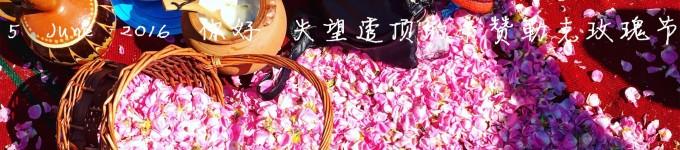 5 June 2016 你好 失望透顶的卡赞勒克玫瑰节